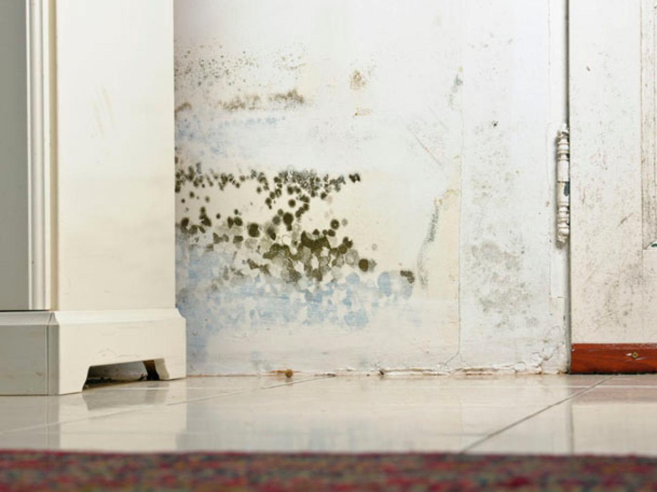 How to Remove Mold and Mildew on Your Walls